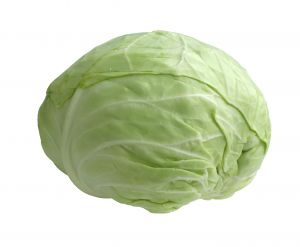 892525_cabbage