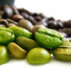 Green-Coffee-Bean-500x500