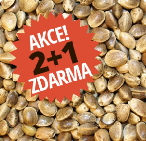 banner_akce